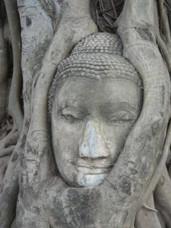 Iconic Buddha Wat Mahathat วัดมหาธาตุ Ayutthaya