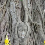 Wat Maha That in Ayutthaya วัดมหาธาตุ อยุธยา