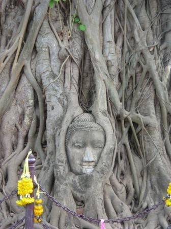 Wat Mahathat วัดมหาธาตุ Ayutthaya