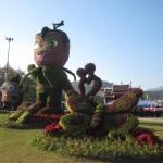 Chiangmairoyalflora2