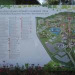 Chiangmairoyalflora4
