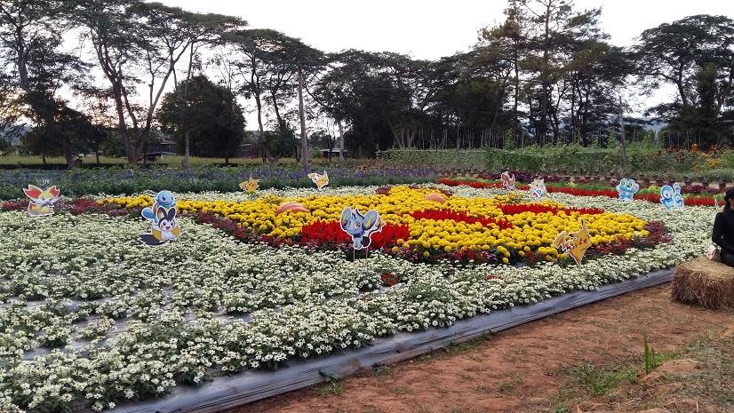TSA Garden Loei Thailand