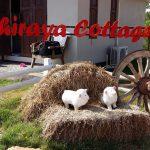 Achiraya Cottage in Sukhothai province