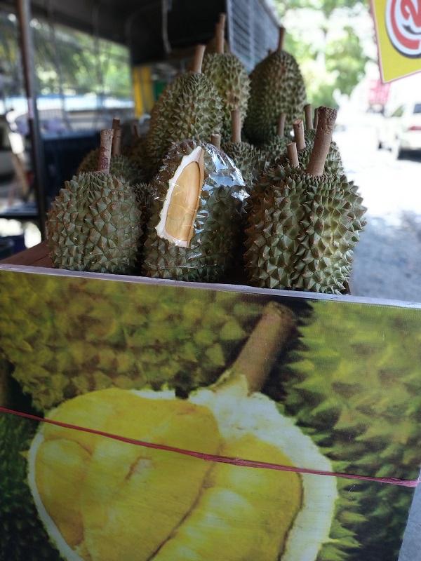 Thai durians ทุเรียน